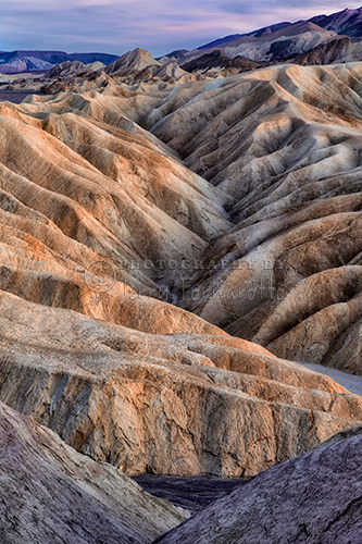 In Death Valley you see bone-dry, finely-sculpted, golden brown rock called mudstone. Only the sparsest vegetation can survive in this intricately carved terrain.
