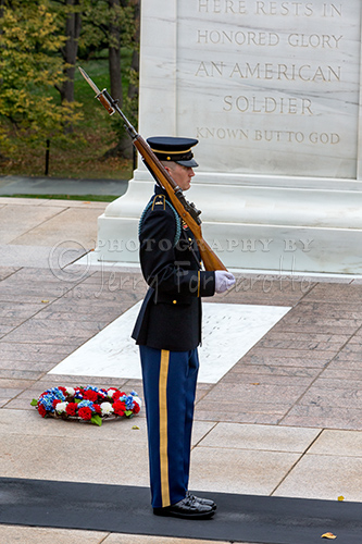 Tomb of the Unknowns Guard