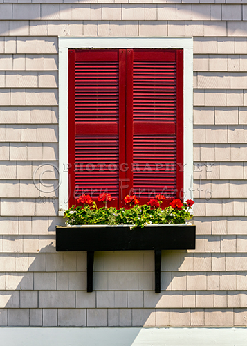 """Shutter and Flowers"" from Boothbay Harbor, Maine."