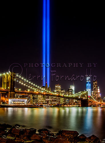 The Tribute Lights