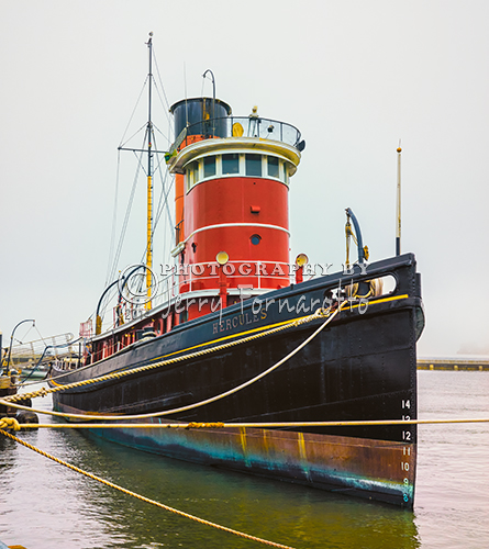 "The tugboat ""Hercules"" towed ships and barges up and down the Pacific Coast. She is now one of the exhibits of the San Francisco Maritime National Historical Park and is to be found moored at the park's Hyde Street Pier."