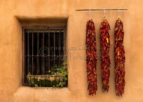 Dried chilis hanging on a wall in Oldtown Albuquerque, New Mexico.