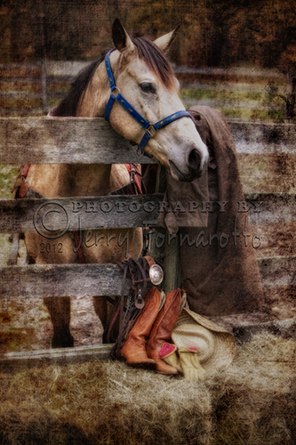 A creative photo of a horse and tack.