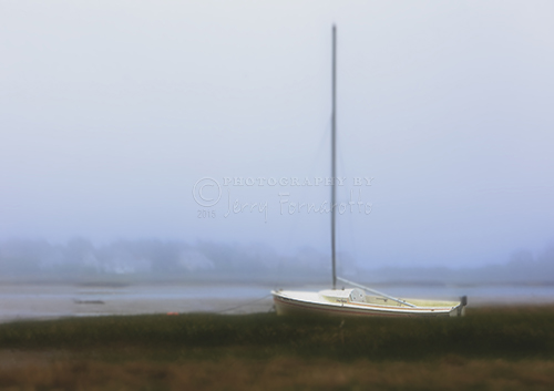 An abandon sailboat in a tidal marsh.