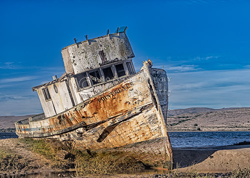 Abandon on Point Reyes
