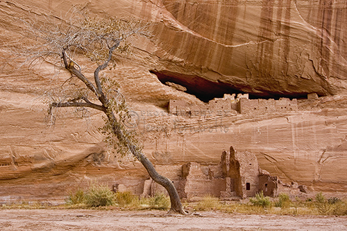 The most popular place to visited in Canyon de Chelly National Monument is White House Ruins.
