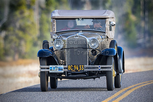 A classic Model A Ford driving through Yellowstone National Park. This car was part of the Model A Touring Club.