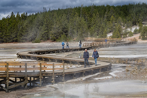 Tourist walking along the Geyser Basin boardwalk.