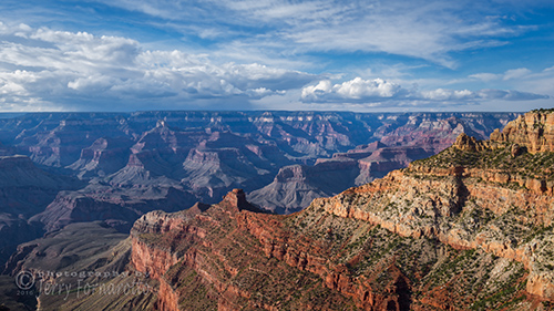 Grand Canyon View 1