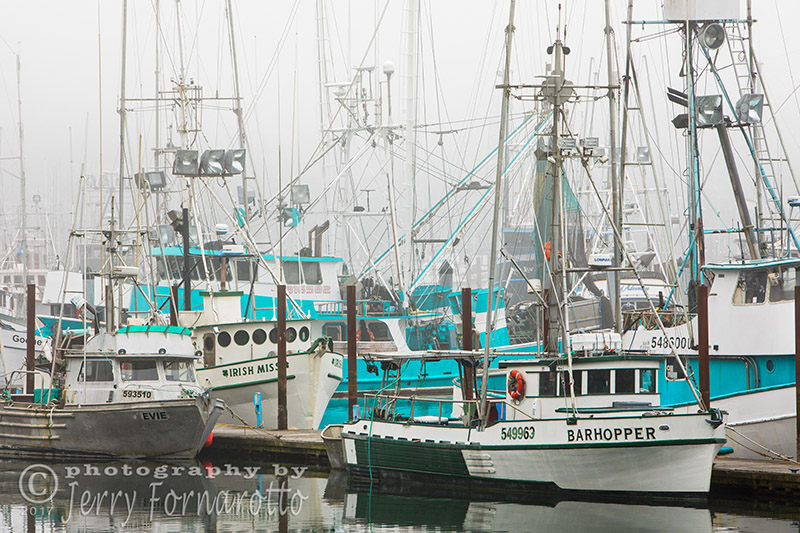 Newport, Oregon Fishing Fleet