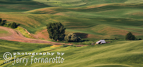 Palouse Farm 1