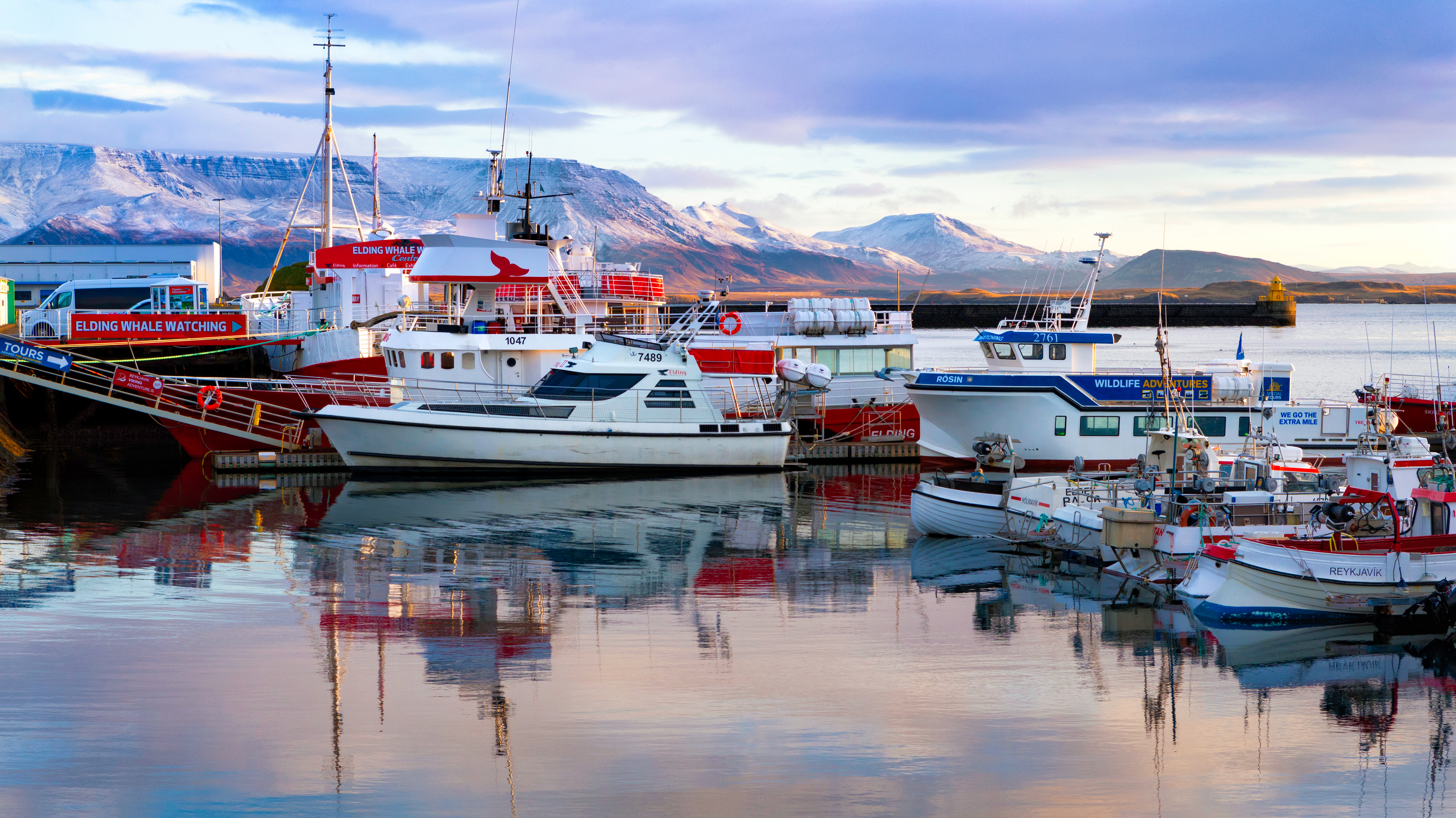 The Old Harbor of Reykjavik was built in 1917. Today it is a hub of fishing boats, whale watching tours and shops.